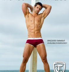 speedster-swimsuit-in-burgundy-from-timoteo