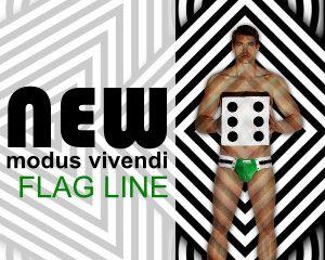 Modus-Vivendi-Flag
