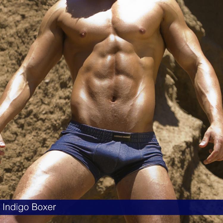modus-vivendi-indigo-boxer
