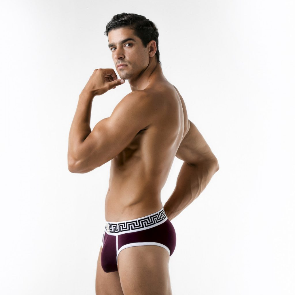 Code 22 underwear - Rome Briefs grape red