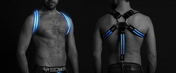 Breedwell jocks and harness