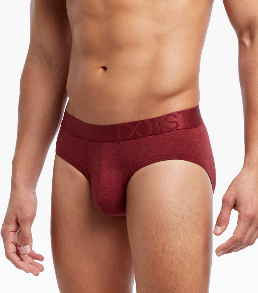 2XIST underwear - Pima Flex Stretch No Show Brief - Ruby Wine