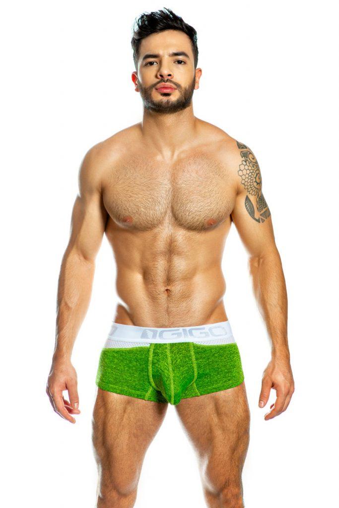 GIGO underwear - Combnet Green boxer