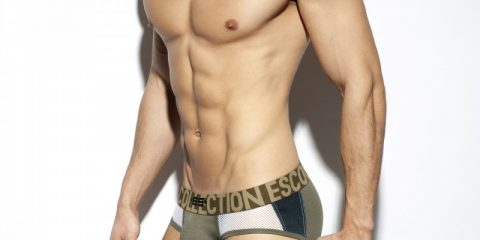ES Collection - Texas Briefs